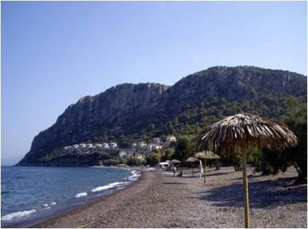 beachaliota2